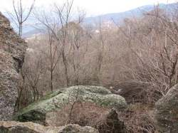 Кавказская пленница: Интересные факты