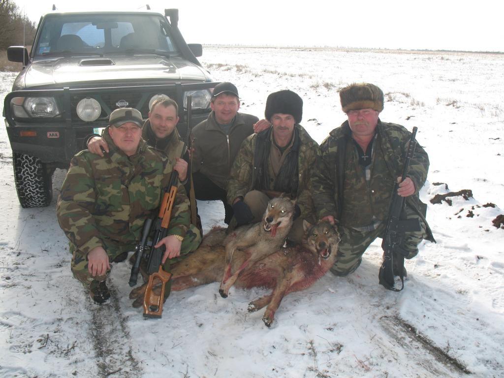Облава на волков в Крыму