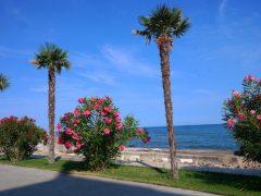 Самое красивое место для отдыха в Крыму