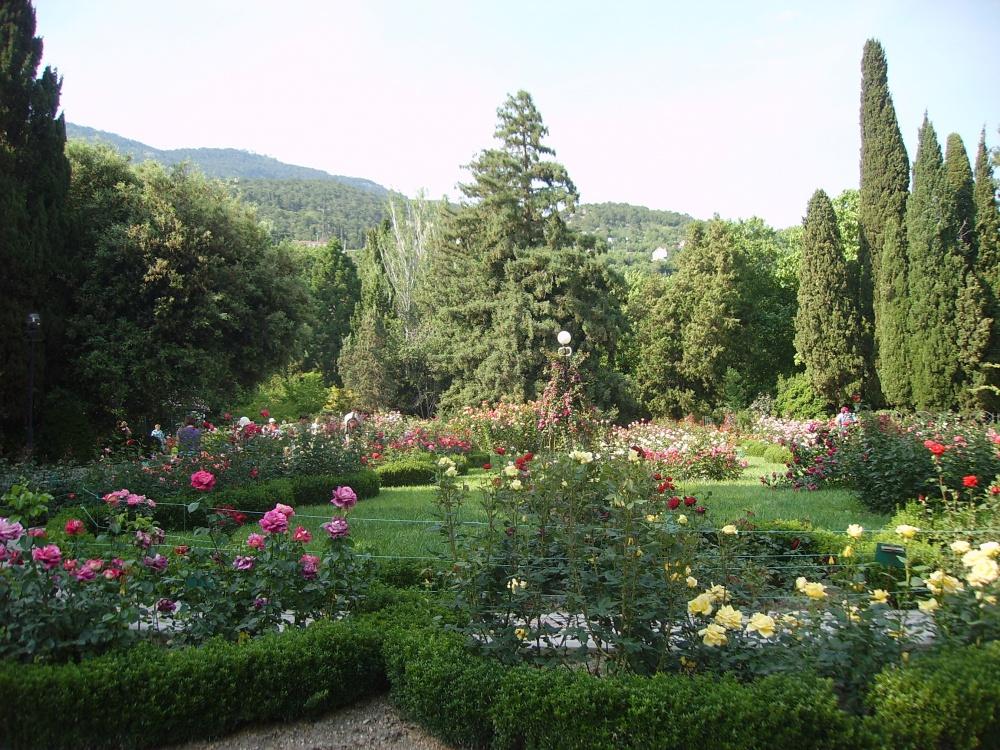 Ботанический сад – лучшее развлечение для детей