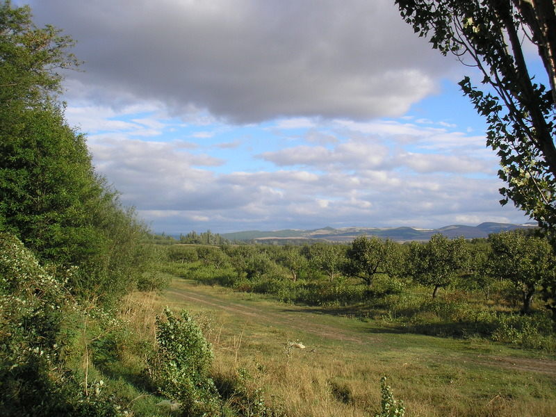 Западный Крым. Долина реки Альмы