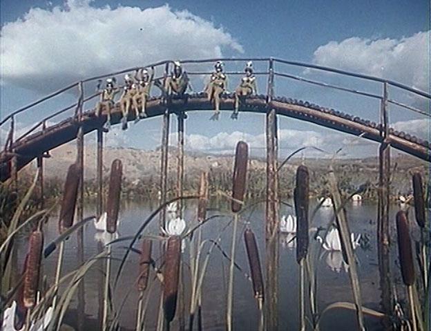 Экскурсоводы в Никитском ботаническом саду любят травить байки о том, что именно здесь, на местном озерце снимался эпизод на болоте с Черепахой Тортилой.