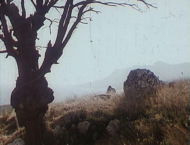 Эпизод с подвешиванием Буратино на дерево был снят на склоне возле Паркового. Позади виднеются характерные очертания Байдаро-Кастропольской гряды.