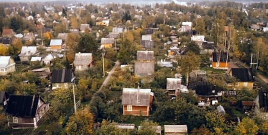 Дачи снимались садовом товариществе возле Севастополя