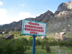 Никулинский орех - достопримечательность Крыма