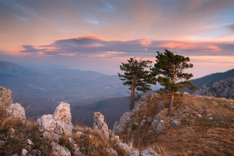 Крымский природный заповедник в Алуште