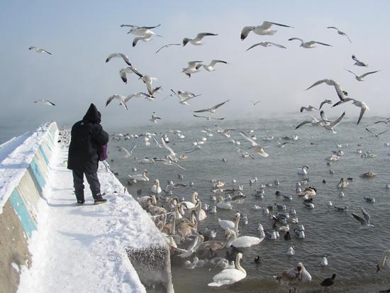 Отдых в Феодосии в зимний период времени